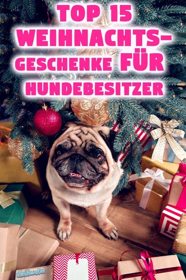 Weihnachtsgeschenke für Hundebesitzer: Die Top 15 Geschenk-Ideen