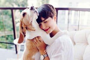 liebt-mein-hund-mich